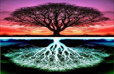 l'arbre de la vie